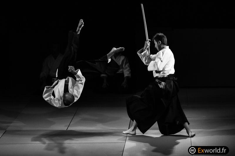 Treći po redu aikido seminar Pascal Guillemin 6.Dan Aikikai ( Cercle Tissier) U Beogradu 8 i 9 April 2017.u organizaciji Aikido association Fujiyama